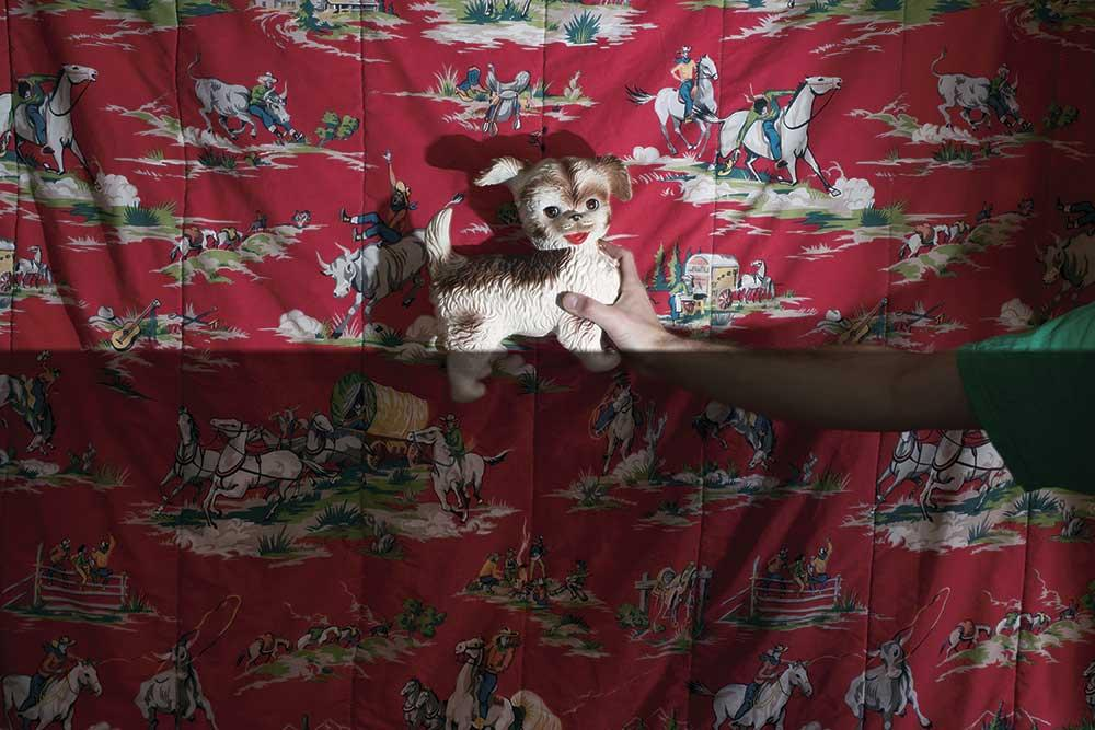 person holding toy dog in front of illustrated blanket
