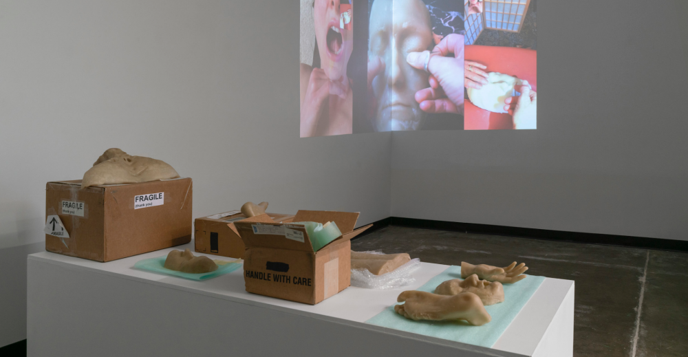 Katy McCarthy's exhibition, Handle With Care, on display featuring wax casts in boxes and projected videos.
