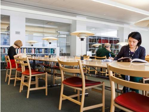 image of multiple people in a library