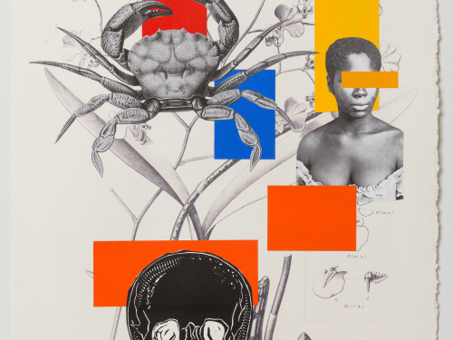 Digital print and collage from contemporary Brazilian artist Rosana Paulino invited to VAC CLAVIS curated exhibition Social Fabric that received 2020 Andy Warhol Foundation grant