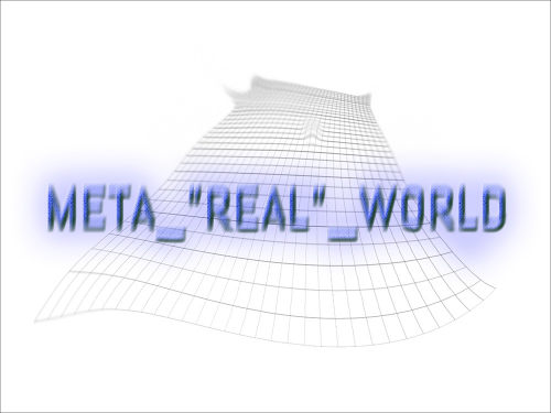 Meta_Real_World