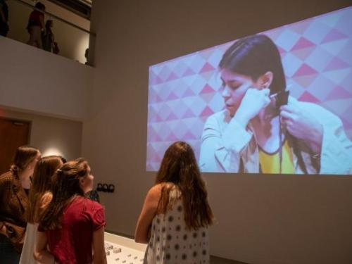 Student-Curated Exhibitions: Call for Proposals 2020-2021