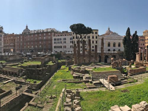 excavation in the middle of rome
